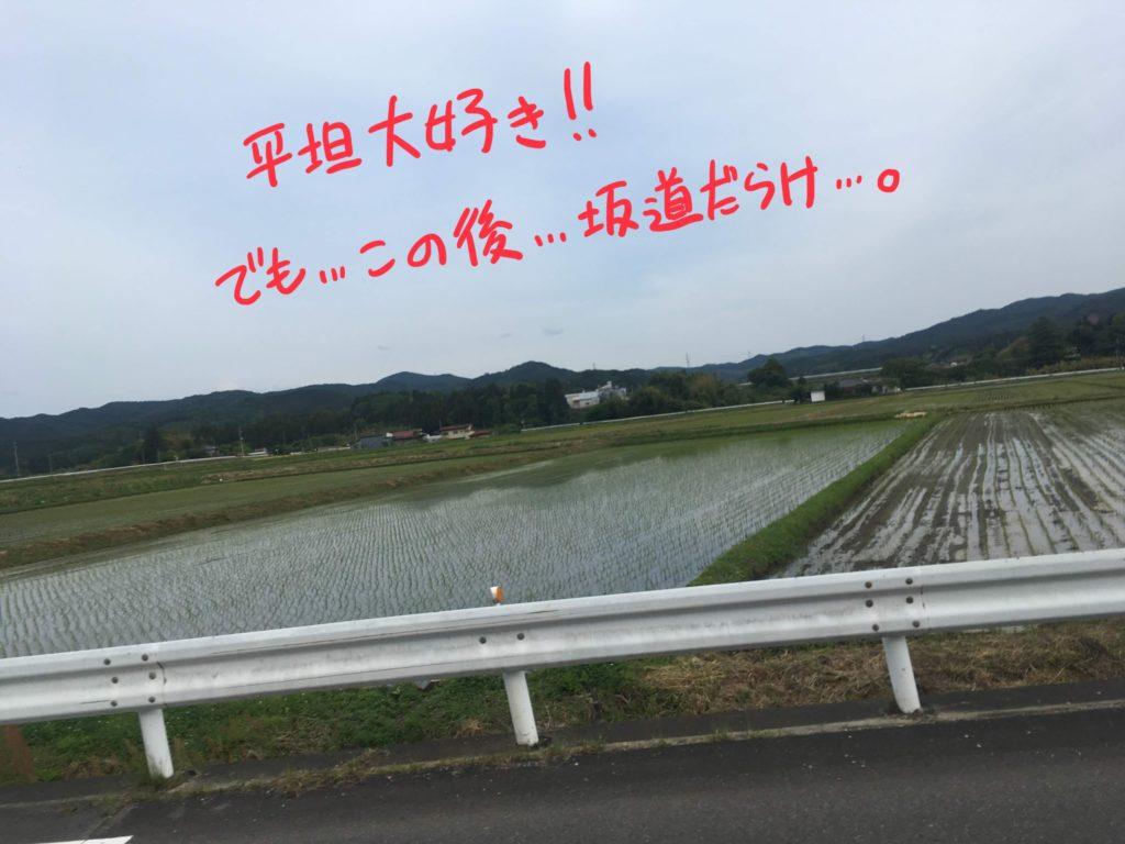 田んぼ道2